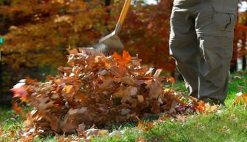 pulizia-viali-giardini